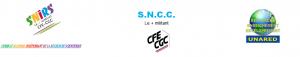 Les syndicats CFE-CGC de la recherche scientifique interpellent les candidats à l'élection présidentielle 2017